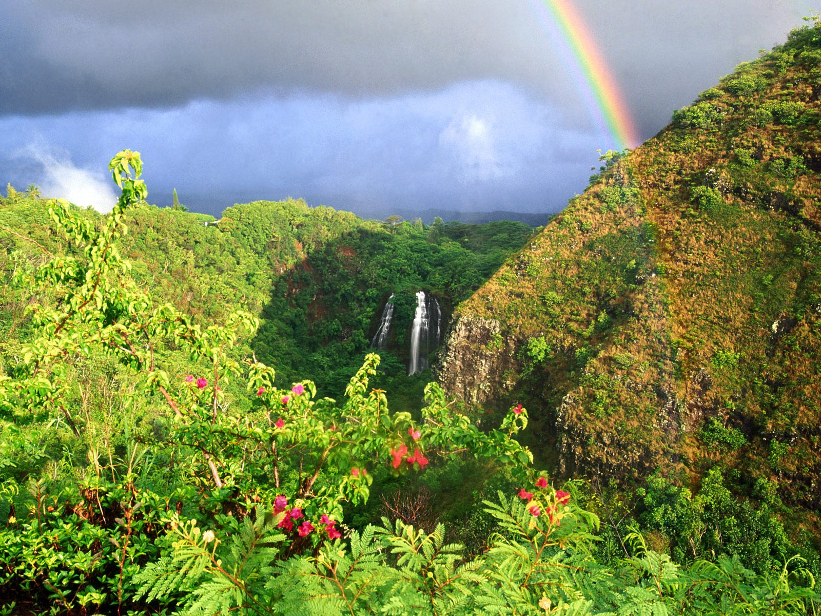 Kauai, email-free vacation, email overload, the grossman group, communication consultant, workplace email