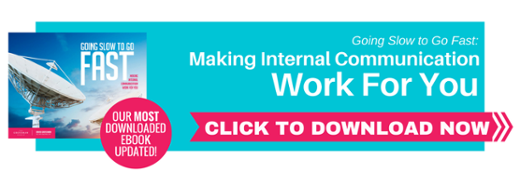 Updated Free eBook – Going Slow to Go Fast: Making Internal