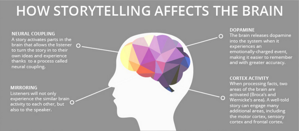 how-storytelling-affects-the-brain