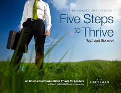 Ebook on Five Steps to Thrive as a Leader